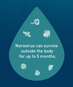 Norovirus can survive outside the body for up to 5 months.