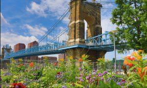 The Roebling Bridge in Cincinnati in the summer.