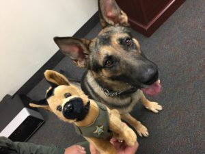 Marion County Sheriffs Office K9 Unit
