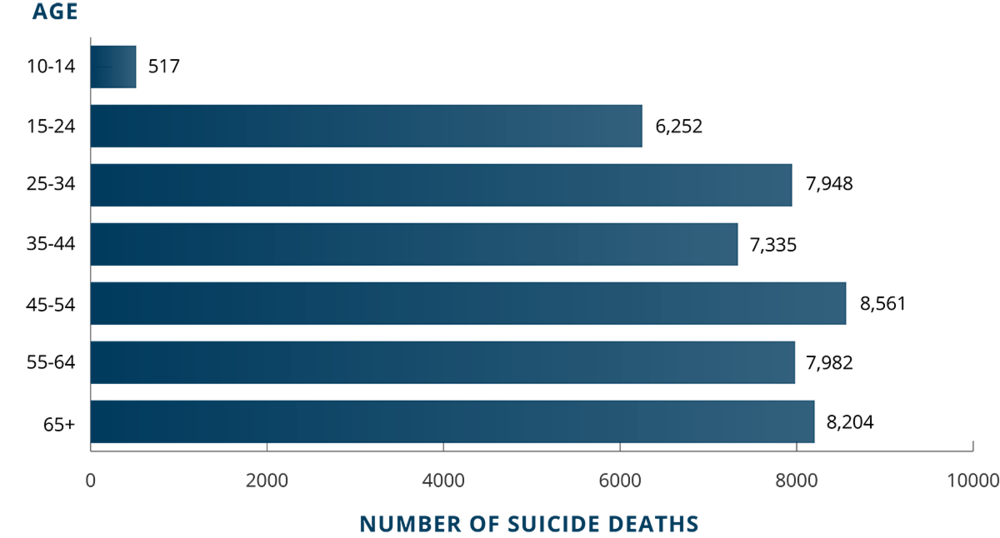 graph of suicide statistics by age