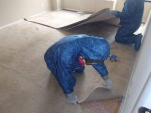 Aftermath crew ripping up carpet in home with protective suits on.