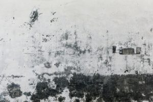 white wall with patches of black dirt and mold